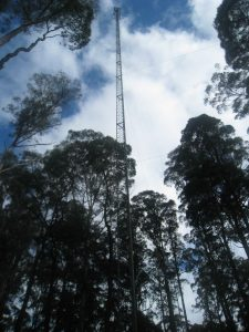 Figure 2 Flux Tower at Warra Supersite forest